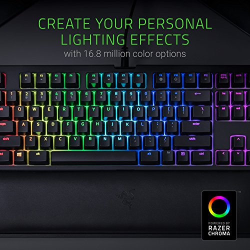 Razer Chroma Keyboard Rest Tenkeyless - Razer Green Switches