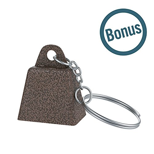 Perfect School Bell Chime for Kids and Alarm for Seniors Loud Musical Percussion Instrument Cheering Bell for Sports Games and Parties 10 Inch Steel Cowbell with Handle Comes with Mini Call Bell