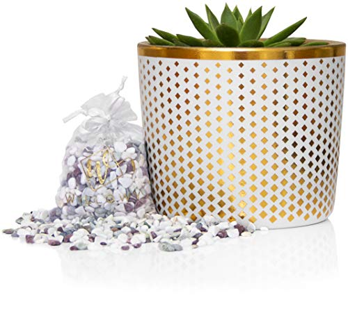 6 Inch Ceramic Plant Pot - Small White Planter with Gold Diamonds - Perfect for Succulents Like Jade & Cactus - Decorative Pebbles Included - Cute Flower Pots Indoor or Outdoor Home Decor
