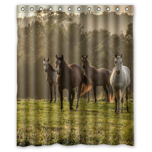 """Fashionable Bathroom Collection-Custom Waterproof Horse Shower Curtain (60"""" x 72"""") With 12 holes-1148"""