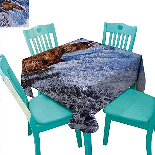 (Nature Washable Table Cloth Grizzly Bear at Katmai National Park Alaska Waterfall Catches Fish Wildlife Picture Washable Polyester - Great for Buffet Table, Parties, Holiday Dinner, Wedding & More 70)