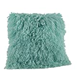 Fennco Styles Genuine Mongolian Lamb Fur Down Filled Decorative Throw Pillow, Many Colors (20-inch Square , Mint)