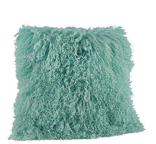 Fennco Styles Genuine Mongolian Lamb Fur Down Filled Decorative Throw Pillow, Many Colors (20-inch Square , Mint) by fenncostyles.com