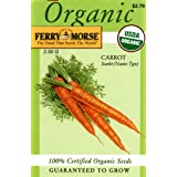 Ferry-Morse Organic Carrot Scarlet Nantes Type Seeds