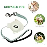 Triumilynn Retractable Cat Leash Palm with Wrist Strap Holder, Small Fish Shape Light and Portable,Bidirectional Mini Extendable Leads for Small Breed up to 60lbs