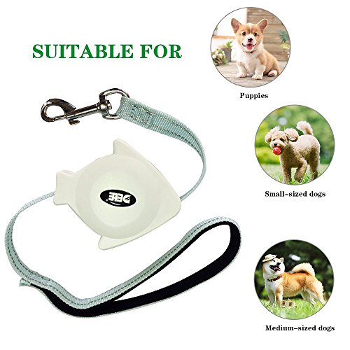 Retractable Cat Leash Palm with Wrist Strap Holder Small Fish Shape Light and Portable,Triumilynn Adjustable Cat Lead with a Gift Collar,Bidirectional Mini Extendable Leads for Small Breed up to 60lbs (Retractable Leash Dog Mini)