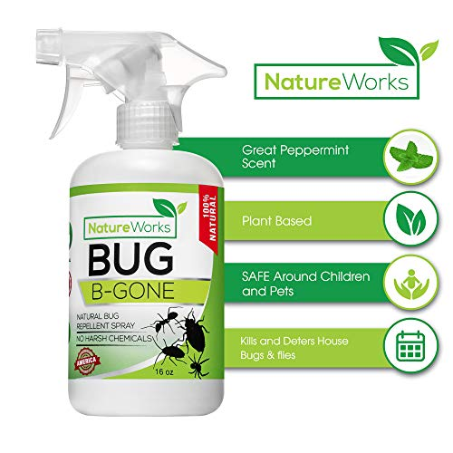 (Bug-B-Gone- Natural Indoor & Patio Pest Control I FDA & EPA Approved I Child & Pet Friendly I Kills & Repeals I Ant, Roach, Termite, Mosquito & Fly's Spider, Silverfish, Centipede (16oz))