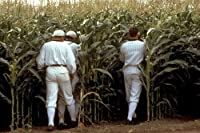 Field of Dreams classic image of baseball players disappear into crops 24x36 Poster