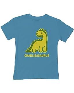 2bc8404a4 Moo and Ruff Clothing Personalised Kids Name Dinosaur T Rex T Shirt ...