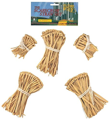 Popcandy Wizard of Oz Scarecrow Straw Kit ()