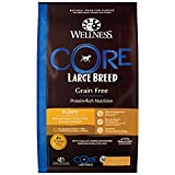 Best Large Breed Puppy Foods - Wellness CORE Natural Grain Free Dry Puppy Food Review