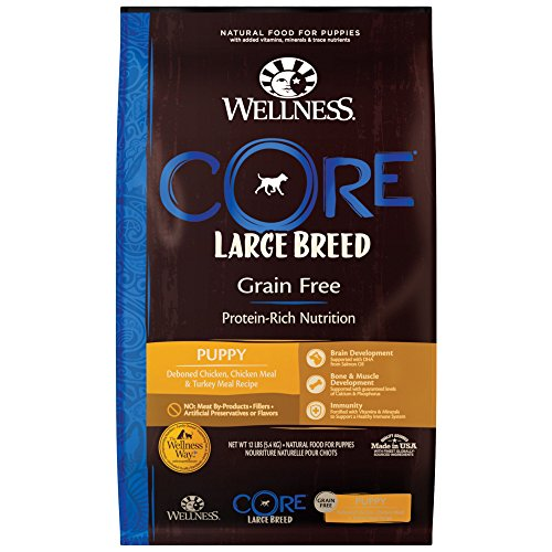 Wellness Core Natural Grain Free Dry Puppy Food, Large Breed Puppy, 12-Pound Bag