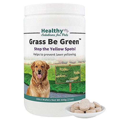 Healthy Solutions For Pets No More Yellow Spots on Your Grass, Stop the Grass Burn and Pee Stains with our Grass Be Green Solution, Made in the -