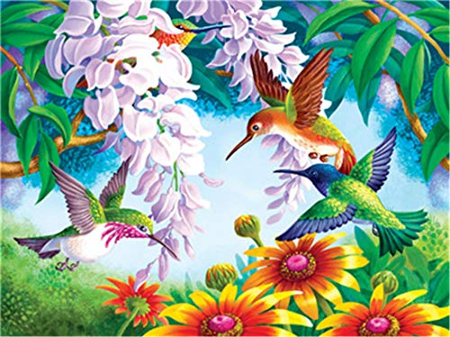 (DIY Oil Painting Paint by Number Kit for Kids Adults Beginner 16x20 inch - Hummingbird Sucking Nectar, Drawing with Brushes Christmas Decor Decorations Gifts (Without Frame) )