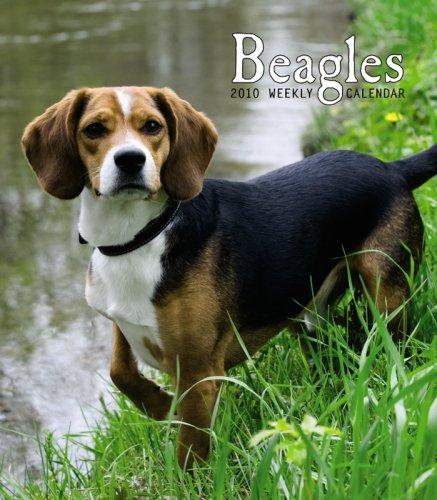Beagles 2010 Hardcover Weekly - Calendar 2010 Beagle