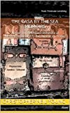 The Casa By The Sea Memoirs: A year in a Mexican Behavioral Modification facility for American Teens (A misfits life Book 1)