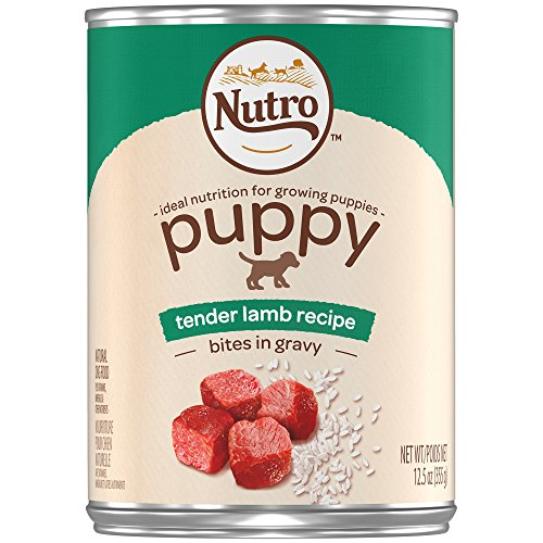 (DISCONTINUED: NUTRO Large Breed PUPPY Tender Lamb Recipe Bites in Gravy Canned Dog Food 12.5 Ounces (Pack of)