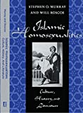 Islamic Homosexualities: Culture, History, and Literature