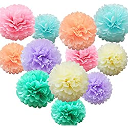 Nature World 12 Pcs Assorted Rainbow Colors Tissue Paper Pom Poms Flower Balls for Birthday Wedding Party Baby Shower Decorations