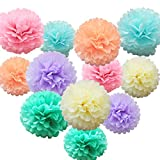 iShyan 12 Pcs Assorted Rainbow Colors Tissue Paper Pom Poms Flower Balls for Birthday Wedding Party Baby Shower Decorations