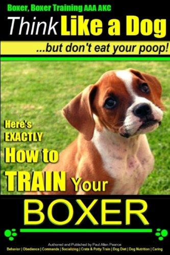 Boxer, Boxer Training AAA AKC: