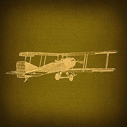 Amazon.com: Vintage Plane Antique Airplane Print for Wall Art & Home ...