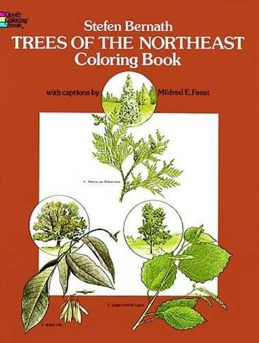 Trees Tranquil (Trees of the Northeast Coloring Book (Dover Nature Coloring Book))