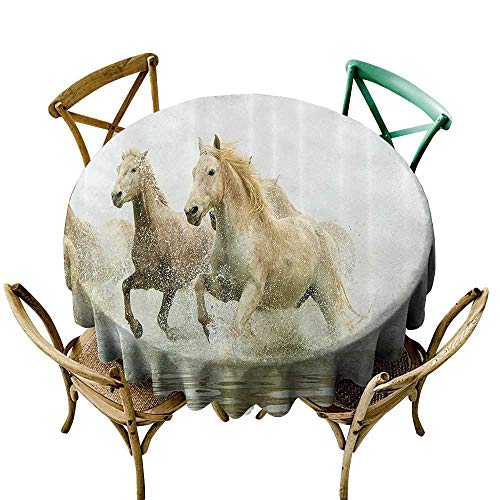 (Jbgzzm Dustproof Tablecloth Animal Decor Camargue Horses in The Water Ancient Oldest Breed in Southern France Origin Artful Photo Picnic D63 White Beige)