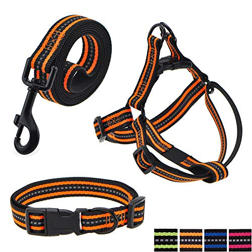 - Mile High Life Night Reflective Double Adjustable Band Nylon Small Puppy Pet Dog Combo (Orange, Collar Leash Harness, Mediun Neck 14