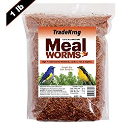 TradeKing 100% Natural Dried Mealworms - Delicious Meal Worms for Wild Birds, Chicken, Fish, Reptiles - Bulk Mealworms (Mealworms 1lb) Bird Food, Chicken Treats, Hen Treats