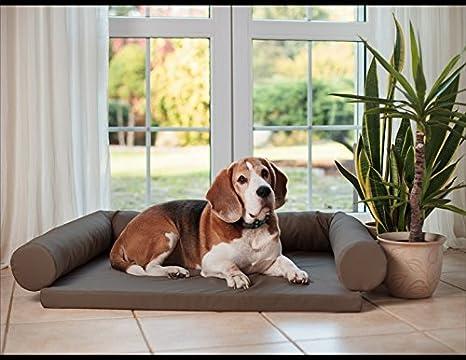 Cama ortopédica para perros Lucky, cojín para perros, tamaño: M-XXL: Amazon.es: Productos para mascotas