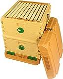 Apimaye 10 Frame Langstroth Insulated Bee Hive Set with Plastic Handy Frames (Original Orange Top)