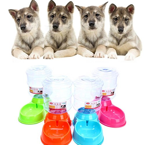 (Sinwo 3.5L Pet Dog Cat Automatic Water Dispenser Device Bottle Dish Pet Water Station Waterer for Dog Cat Animal Automatic Gravity Water Drinking Dog Waterer Cat Waterer (Orange))