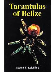 Tarantulas of Belize