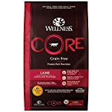 Wellness Core Natural Grain Free Dry Dog Food, Lamb, 12-Pound Bag