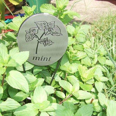 - Herb Marker (Mint) [Set of 2]