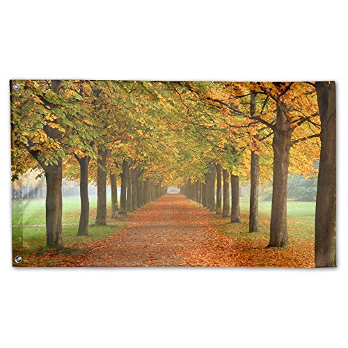 IMLJD Autumn Leaves 3D Fall Colors 3'x 5' Outdoor/Indoor Dec