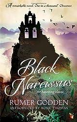 Black Narcissus: A Virago Modern Classic (VMC) by Godden, Rumer (2013)