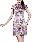 Coac3 Faux Silk Qipao Dress Traditional Chinese Oriental Dresses Chinese Qipao Women Dress 089 Puprle L