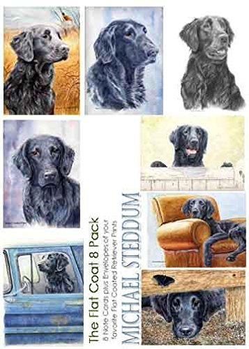 Michael Steddum Flat Coated Retriever 8 Pack Note Card Set