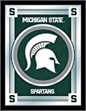 NCAA Michigan State Spartans Logo Mirror, 17 X 22-Inch