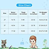 4 Pack Cotton Training Pants Toddler Potty Training Underwear for Baby Boys-2T