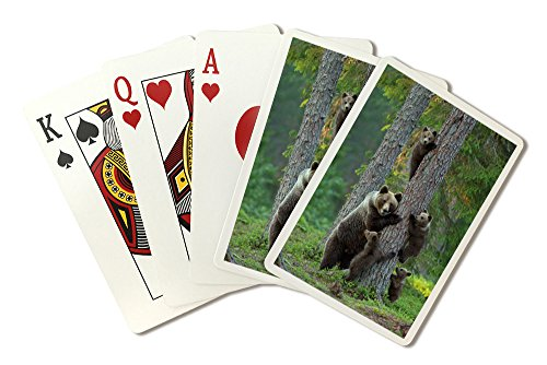 Grizzlies Card - Grizzly Bear Family Climbing Tree (Playing Card Deck - 52 Card Poker Size with Jokers)
