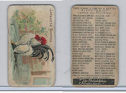E31 Philadelphia, Zoo Cards, Game Fowl, 1907, Japanese