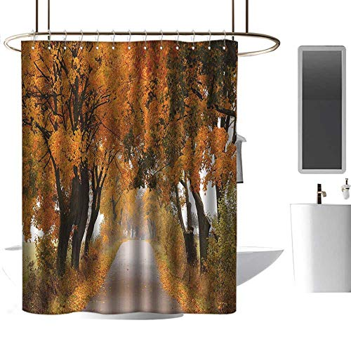 coolteey Shower Curtains for Bathroom Orange Fall,Fall Season in Poland Road with Colorful Vibrant Maple Trees Serenity Theme,Orange Brown Green,W72 x L72,Shower Curtain for Men ()