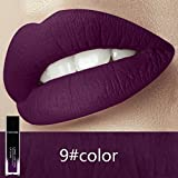 Matte Liquid Lipstick, Cocohot Long Lasting Waterproof Lip Gloss Matte Velvet (A9)