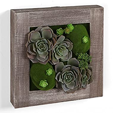 10 inch Country Rustic Brown Wood Framed Wall Mounted Artificial Succulent Plant Arrangement Art Display