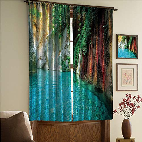 Window Curtains Colorful Apartment Picture for Bedroom/Living Room/Kids/Youth Room Curtain Panels,2 Panel,Cove Clear Water Lake Ivy Colorful Moss Rocks 108Wx108L ()
