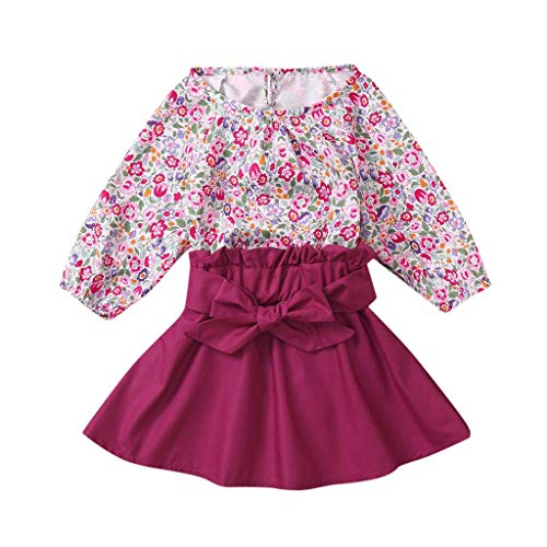 Newborn Baby Girl Romper Skirt 2 Pcs,Crytech Cotton Long Sleeve Floral Print Jumpsuit Solid Knee Length Skirt Outfit for Infant Toddler 0-24 Months Spring Fall Clothes (6-12 Months, Purple)