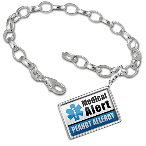 Charm Bracelet set Medical Alert Blue Peanut Allergy